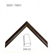 3022-TW01